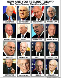 Cheney20emotional20chart